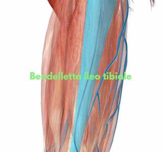La sindrome della bendelletta ileo-tibiale